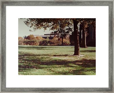 Carnegie Museum Of Pittsburgh Framed Print by Joann Renner