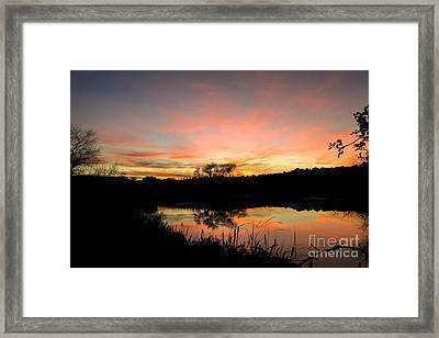 Carneros Reflection Framed Print by Jordan Rusin