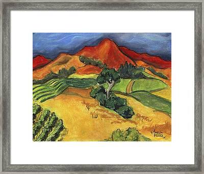 Carneros Vineyard Summer Framed Print by Amelia Hunter