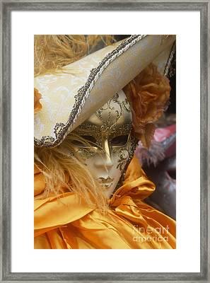 Carnevale Di Venezia 108 Framed Print