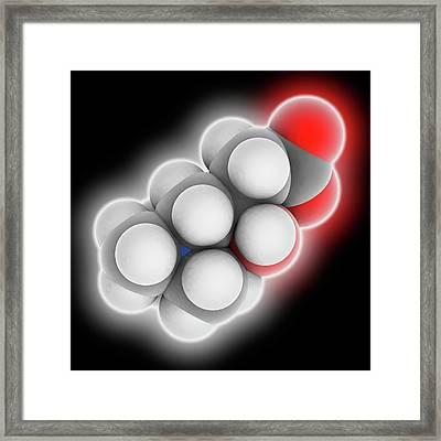 Carnitine Molecule Framed Print by Laguna Design