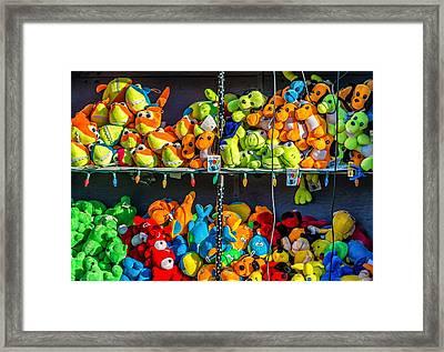 Carnival Critters Framed Print by Steve Harrington