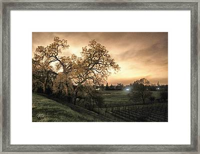 Carole's Vineyard Framed Print