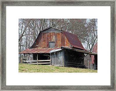 Carolina Barn Framed Print by Suzanne Gaff