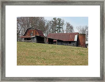 Carolina Barns And Silo II Framed Print by Suzanne Gaff