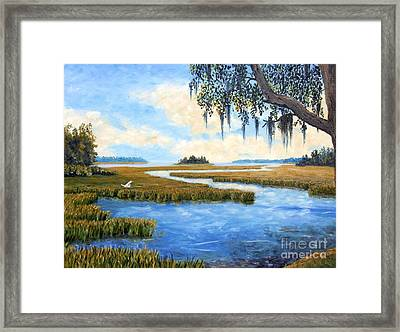 Carolina Colors Framed Print