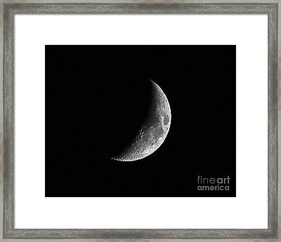 Carolina Crescent Framed Print by Al Powell Photography USA