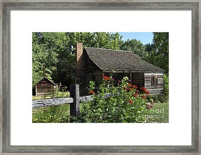 Carolina Garden Framed Print by Skip Willits