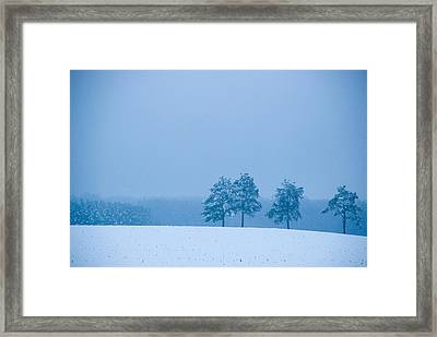 Carolina Snow Framed Print by Beverly Stapleton