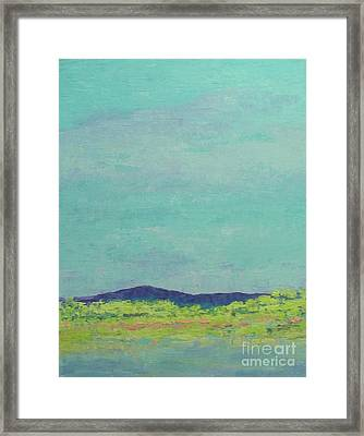 Carolina Spring Day Framed Print by Gail Kent