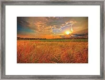 Carolina Summer  Framed Print