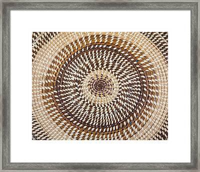 Carolina Sweetgrass Framed Print by Patricia Schaefer