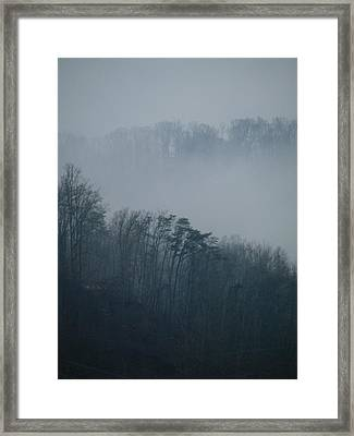Carolina Winter #1 Framed Print