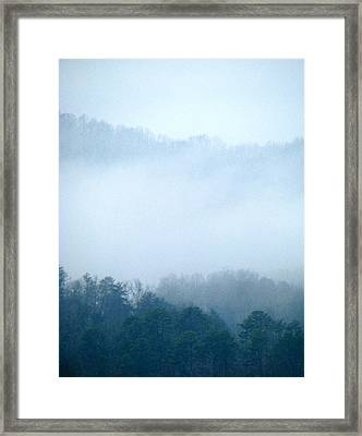 Carolina Winter Number Two Framed Print