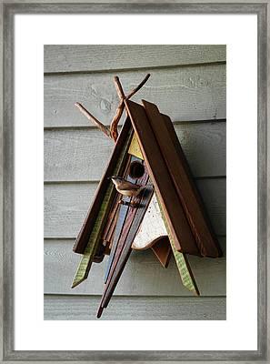 Carolina Wren Bringing Food To A Nest Framed Print