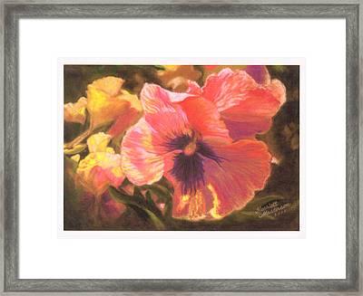 Caroline's Pansies Framed Print