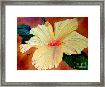 Carols Hibiscus Framed Print by Sharon Burger
