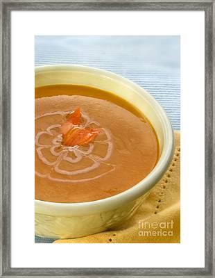 Carottgingersoup Framed Print by Iris Richardson