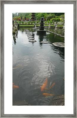 Carp Pond Bali Framed Print by Jack Edson Adams