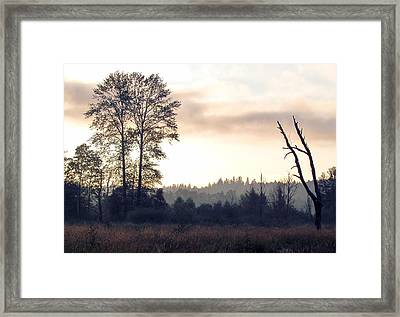 Framed Print featuring the photograph Carpe Diem by I'ina Van Lawick