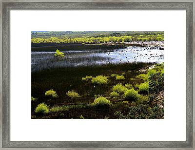 Carretera Austral River Framed Print by Arie Arik Chen