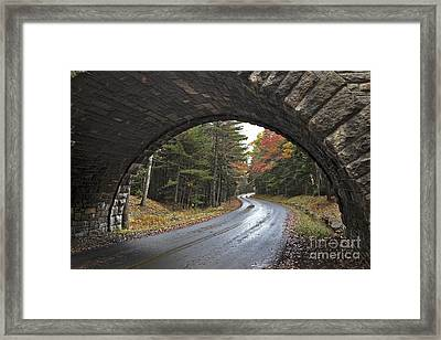 Carriage Bridge Framed Print
