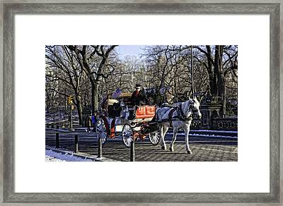 Carriage Driver - Central Park - Nyc Framed Print by Madeline Ellis