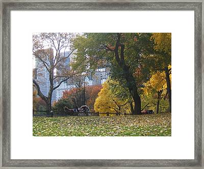 Framed Print featuring the photograph Carriage Ride Central Park In Autumn by Barbara McDevitt