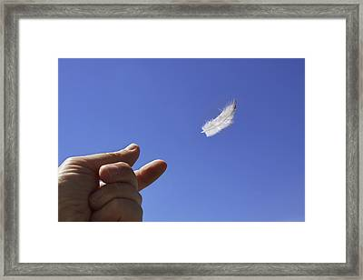 Carried On Wind Framed Print