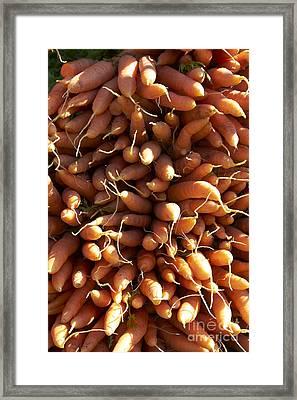 Carrots Framed Print by Tony Cordoza