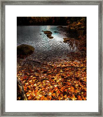 Cary Lake In The Adirondacks Framed Print