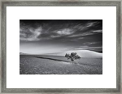 Framed Print featuring the photograph Carry On  by Patrick Downey