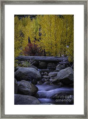 Carson River Autumn Framed Print by Mitch Shindelbower