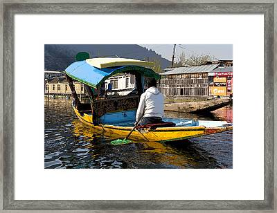 Cartoon - Kashmiri Man Driving This Shikara In The Still Waters Of The Dal Lake In Srinagar Framed Print by Ashish Agarwal