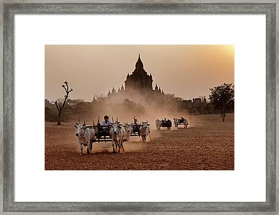 Carts Pulled On A Dusty Field, Bagan Framed Print