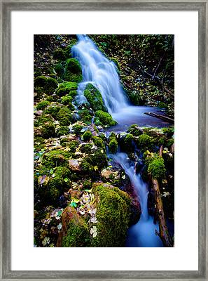 Cascade Creek Framed Print by Chad Dutson