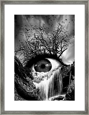 Cascade Crying Eye Grayscale Framed Print by Marian Voicu