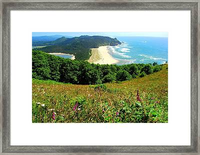Cascade Head Framed Print by Mamie Gunning