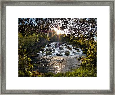 Cascade In Evening Sun Framed Print by Leland D Howard
