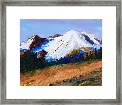 Cascade Framed Print by Nancy Merkle