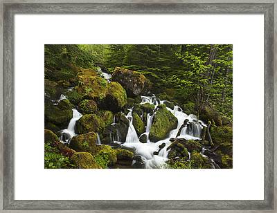 Cascades In The Woods Framed Print by Andrew Soundarajan