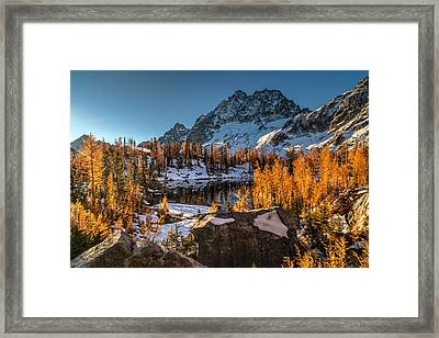 Cascades Ring Of Larches Framed Print by Mike Reid