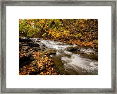 Cascadilla Gorge Trail Framed Print