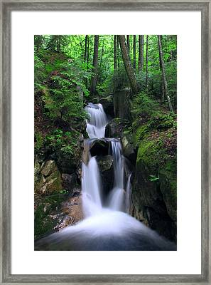 Cascading Brook Framed Print