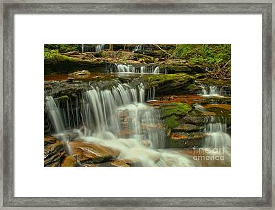 Cascading Everywhere At Ricketts Glen Framed Print by Adam Jewell