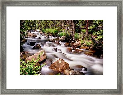 Cascading Rocky Mountain Forest Creek Framed Print