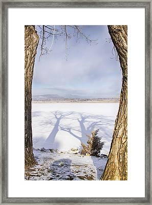 Casting Big Shadows Framed Print by James BO  Insogna