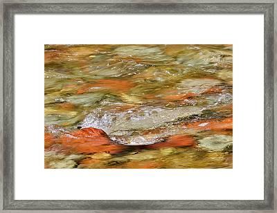 Castle Creek, Aspen Township, Colorado Framed Print
