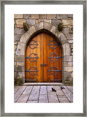 Castle Door Framed Print