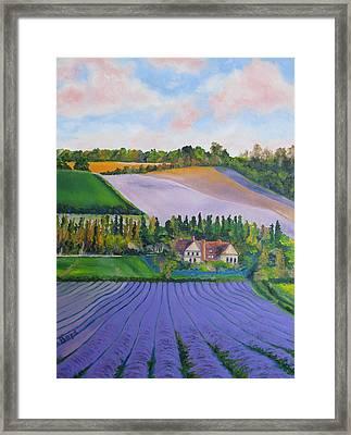 Castle Farm Shoreham Kent Lavender Fields England Framed Print by Lisa Boyd
